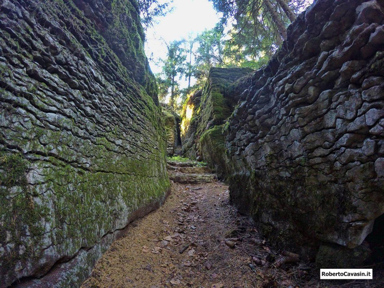 Escursione sul Monte Corno - Museo diffuso di Lusiana (VI)