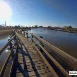 Oasi della Laguna di Marano Lagunare (UD)