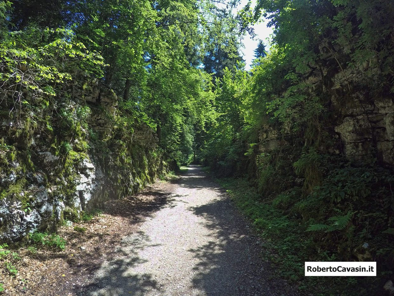 Strada del Vecchio Trenino - Altopiano di Asiago 7 Comuni